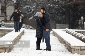 تصاویری زیبا از برف امروز تهران